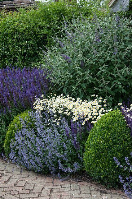 mixed herbaceous border garden outdoor gardens