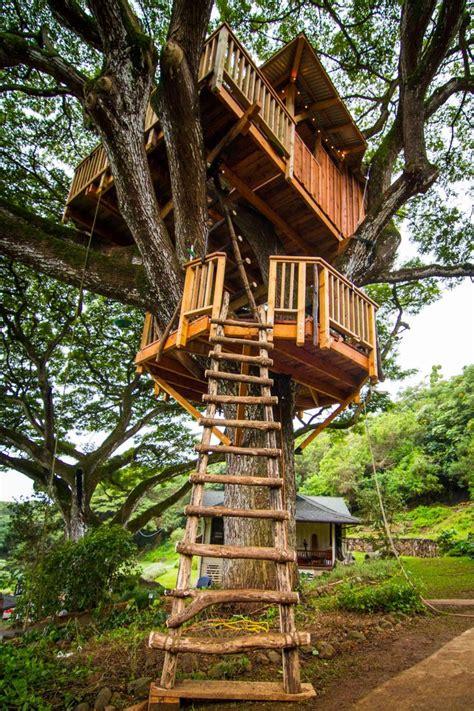 Backyard Treehouse Ideas by Explore Three Treehouses Treehouses