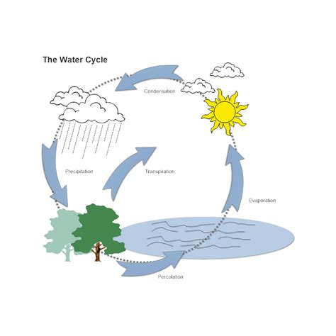 diagram of a cycle of a water cycle diagram