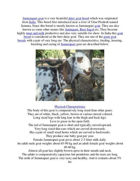 goat milk tattoo removal goat breeds