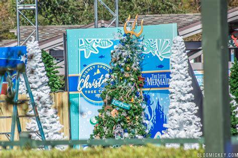 photos disney springs prepares annual christmas tree