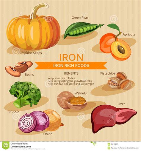 fruits w potassium vitamins and minerals foods illustration vector set of