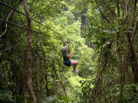 jaguar paw forest jaguar paw zip line and cave tubing seahorse dive shop