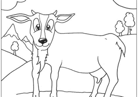 cute goat coloring pages cute goat coloring pages coloring home