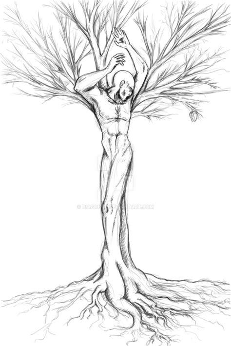 sketch a tree sahaquiel god tree sketch by diagonne on deviantart