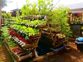home vegetable garden beginners guide to growing a vegetable garden at home