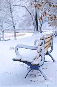 winter bench photograph by elisseeva