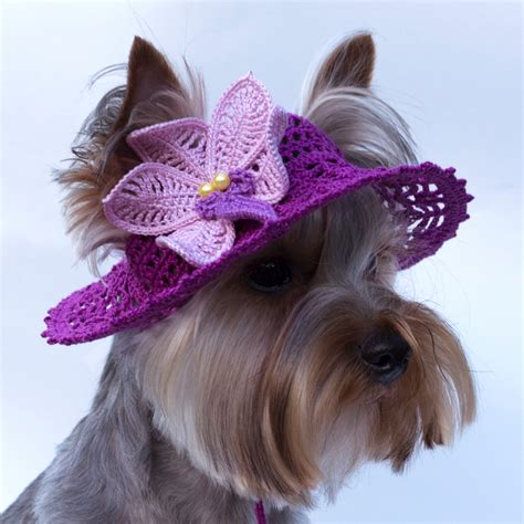 beanies for dogs hat for orchid sun hats hats for