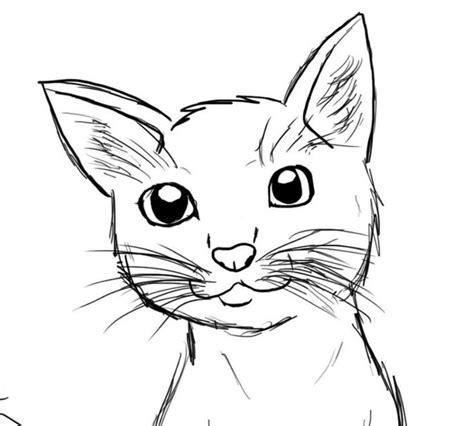 25 ide terbaik tentang kucing lucu di anak kucing lucu anak kucing lucu dan