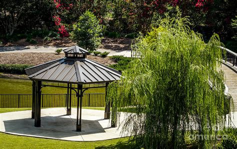 willow gazebo gazebo and weeping willow photograph by arturo vazquez