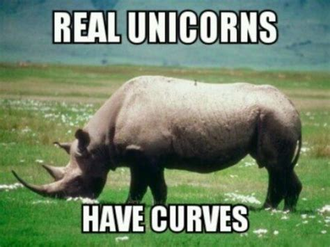 Unicorn Memes - scientists may have been wrong about the siberian unicorn