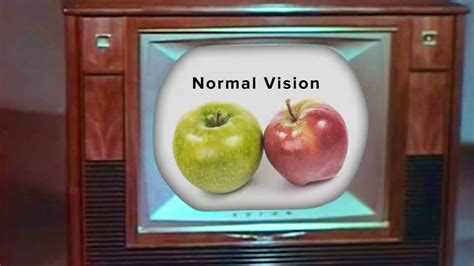 most common color blindness color blindness the most common genetic disorder