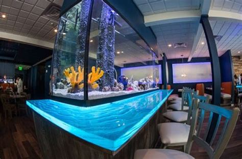 design aquarium restaurant restaurant rebranding with efficient function wow factor