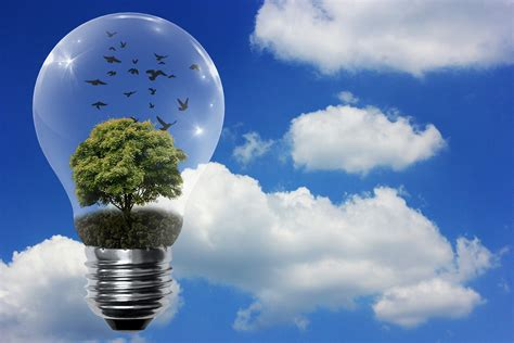 most energy efficient light bulbs save with most energy efficient light bulbs