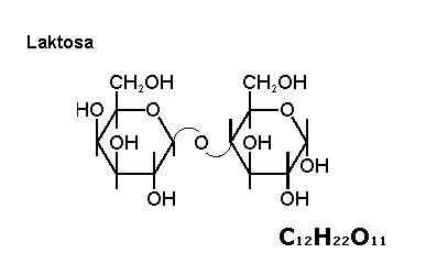 Formula Rendah Laktosa kimia organik karbohidrat