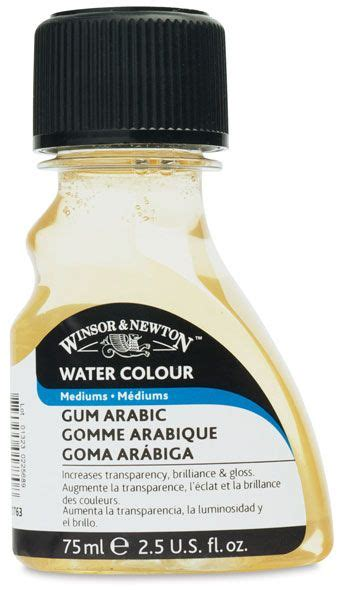 Winsor Newton Gum Arabic 3735 best watercolor images on watercolor paintings water colors and