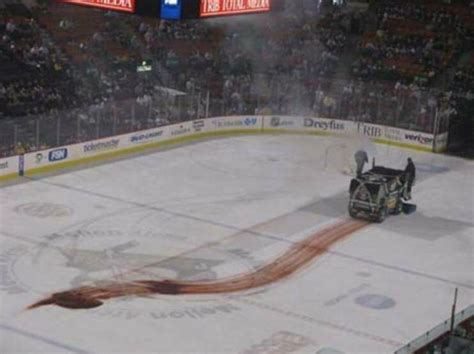 a zamboni leaking transmission fluid looks a lot like a