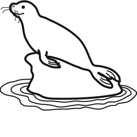 imagenes para colorear foca desenho de foca marinha para colorir tudodesenhos