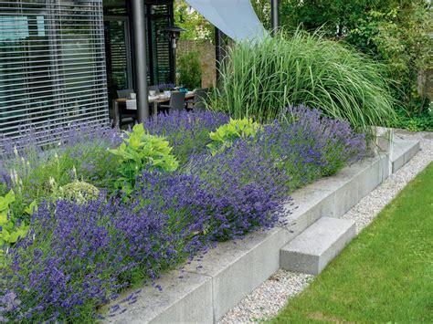 Garten Gestalten Lavendel by Ideen Mit Lavendel Mein Sch 246 Ner Garten