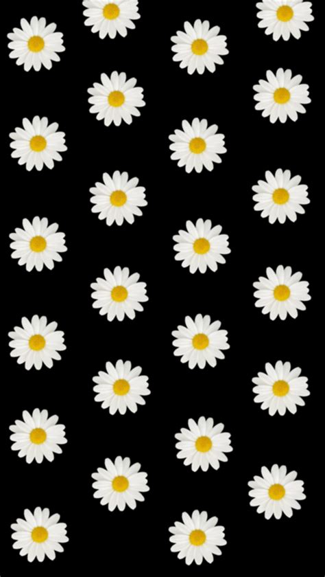 daisy pattern tumblr daisy wallpaper tumblr