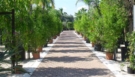 lapietra giardini lapietra giardini vivai a monopoli ba