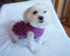 Knitted dog sweater patterns free for small dogs pattern knitting