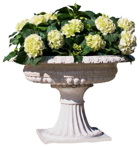 Large White Planters by Planter Footed Antique White Large Traditional