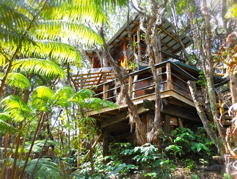treehouse honeymoon mahinui na an amazing treehouse retreat near hawaii