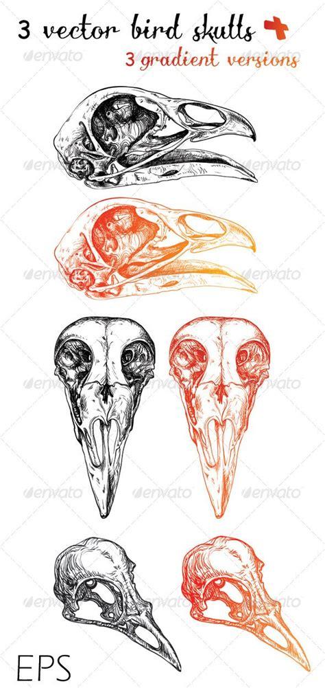 bird skull tattoo 3 vector bird skulls 3 gradient versions bird skull