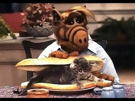 the world s best photos of gremlins and ttbbm alf television show monday memories
