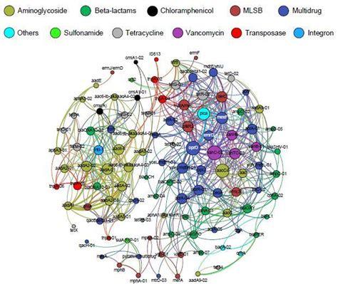 patterns human activities large scale antibiotic resistant genes found in estuarine