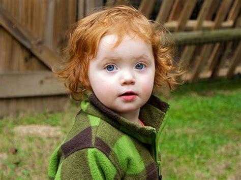 toddler haircuts learn haircuts