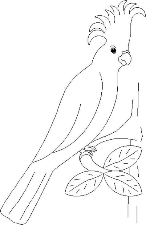 Gambar Mewarnai Burung Anak Tk,SD dan PAUD