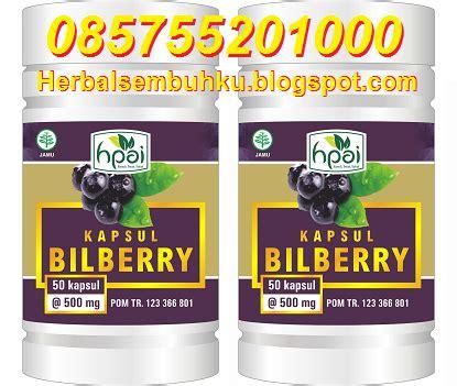 Obat Herbal Uh Untuk Katarak kapsul bilberry hpai jual murah grosir