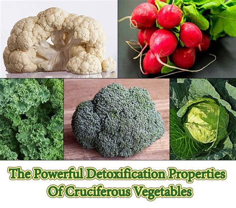 Powerful Detox Foods by 72 Best Images About Health Benefits Of Juicing Juice