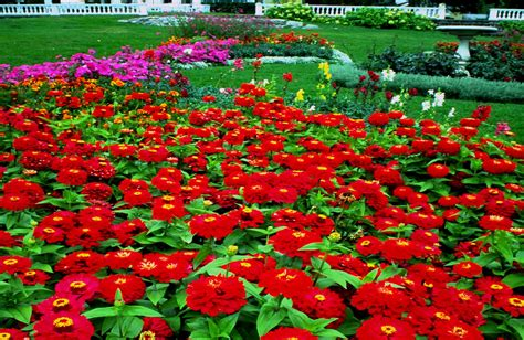 free gardens wallpapers free beautiful gardens photos download