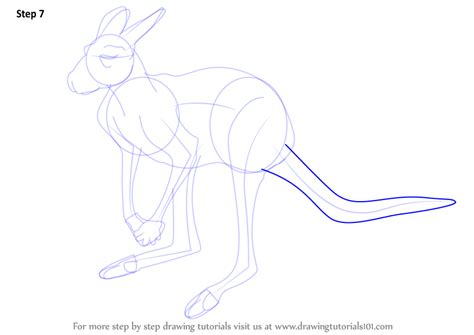 wallaby tutorial learn how to draw a red kangaroo kangaroos step by step