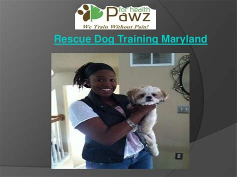 puppy rescue maryland get the service of rescue maryland
