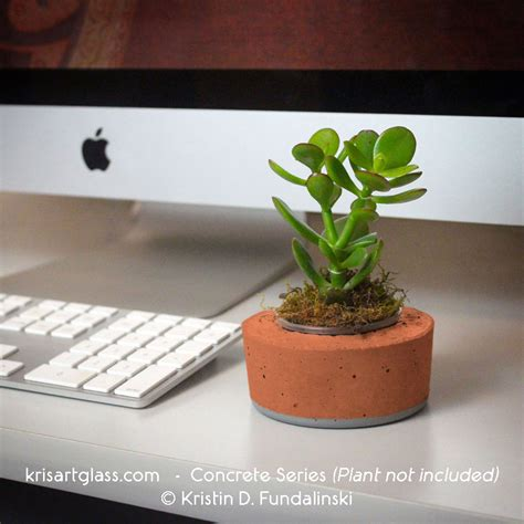 desk garden top 5 reasons for having desk plants kris art glass
