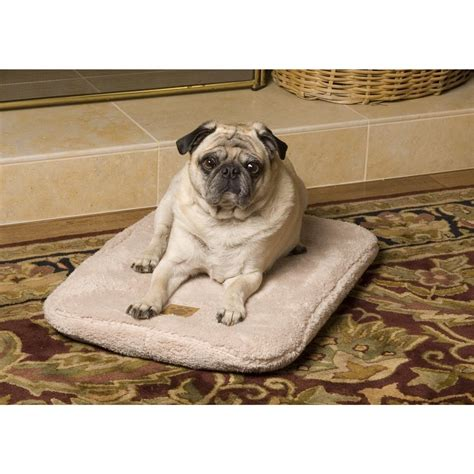 precision pet 174 snoozy ortho air therapeutic pet bed 174287 kennels beds at