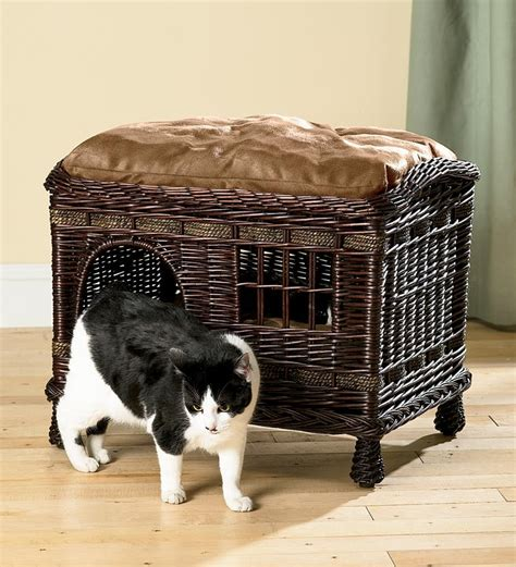 new cat hiding under bed two tier wicker cat bed pet solutions problem solvers