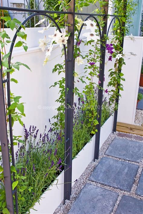 The Mattress Vine by Idea Raised Bed Trellis For Climbing Vine