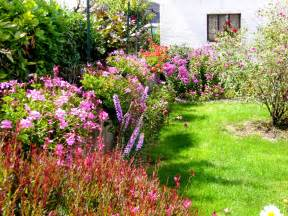 petit jardin fleuri images