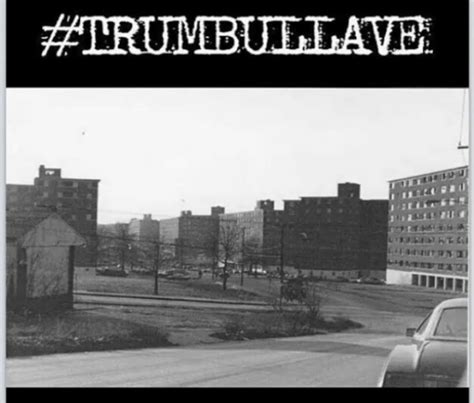 Trumbull Gardens Bridgeport Ct by Throwback Thursdays Trumbull Gardens Doingitlocal