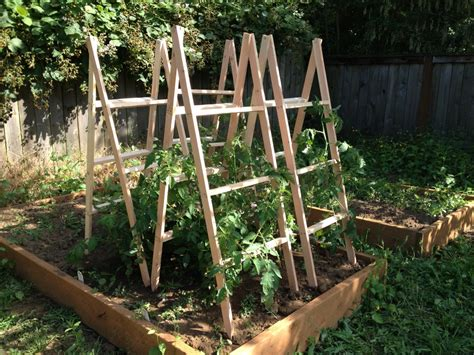 wooden cage woodwork how to build wood tomato cages pdf plans