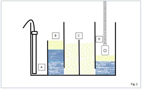costruire vasca acquario passione acquario la sump