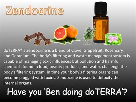 Detox With Doterra Essential Oils by Need A Cleanse Detox Zendocrine Essential Blend To