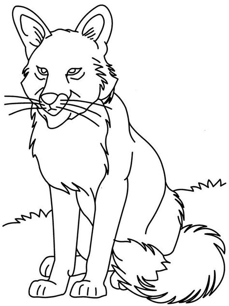 baby wolf coloring pages baby wolf pup coloring pages