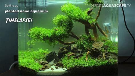 layout aquascape nano setting up planted nano aquarium timelapse awesome