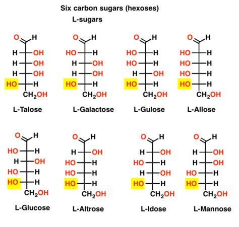 r s configuration carbohydrates d and l sugars master organic chemistry